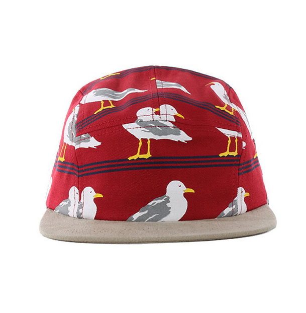 Solid 5 panel hat